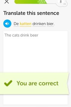 21 Times Duolingo Was Too Turnt For Its Own Good