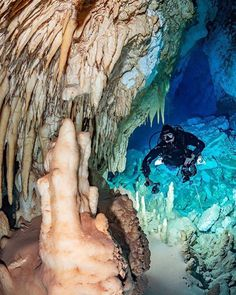 Scuba Diving Cancun, Mayan Riviera Mexico, Red Sea Diving, Scuba Diving Equipment, Cave Diving, Shipwreck, Sea World, Under The Sea, Underwater