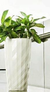 office planter boxes. planters with self watering system home and office planter boxes