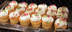Cape May Cafe:  Cupcakes