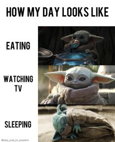 Funny Pix, Super Funny Memes, Cute Funny Quotes, Funny Picture Quotes, Funny Relatable Memes, Best Funny Pictures, Funny Jokes, Hilarious, Yoda Meme