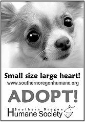 Adopt is the mission, the message  www.sohumane.org