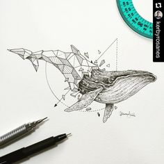 """One of my favorite artists on IG! His new series ""Geometric Beasts"" are quite fascinating and inspirational."""