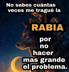 Love Qutoes, Humor, Memes, Quotes, Instagram Posts, Tamarindo, Geronimo, Irene, One Man Wolf Pack