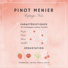Guide Vin, Grand Cru, In Vino Veritas, Wine Tasting, Champagne, Vegan, Drink, Cooking, Blog