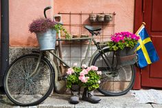 Find out about the best things to do in 3 days in Stockholm. Here are tips for your Stockholm itinerary with many travel tips. Norway House, Health Insurance Cost, Garden Structures, New City, Vintage Bicycles, Vacation Packages, Stock Foto, New Movies, Flower Decorations