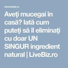 Aveţi mucegai în casă? Iată cum puteţi să îl eliminaţi cu doar UN SINGUR ingredient natural | LiveBiz.ro
