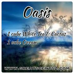 Oasis Scentsy Recipe Http://KennyRStephens.Scentsy.us/ or Facebook page Scentsy Fragrance Online Store