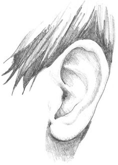 Unless you are a cartoon artist, drawing realistic ears is one of the the hardest parts of the human body you will ever learn to draw. Not because it is hard to draw - but because very few artists...