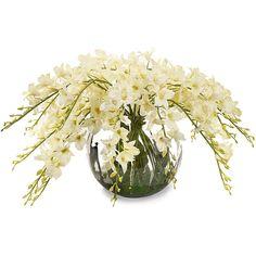 John-Richard Enchanting Dendrobiums Botanical (43.745 RUB) ❤ liked on Polyvore featuring home, home decor, floral decor, flowers, decor, plants, floral, flowers / foliage, john-richard and floral home decor