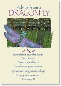 Blank Card with Quote / Saying - Advice from a DRAGONFLY   Your True Nature®   1_2002642-P   Leanin' Tree
