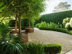 7 Most Creative Minimalist Garden Designs for Small Landscape Now it's not a reason a small house doesn't have a garden. Minimalist garden design, both on narrow land, front or back of the house, indoor or rooftop. Whatever area of land you have…