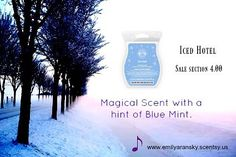 Who loves a amazing magical scent. This one is on sale #letsmakemagic #entrepreneurlifestyle #scentsybars #lovewhatyoudo #ssgu#unicorns #icehotel