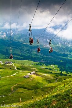 A. Selkeä rytmi Experience the feeling of swinging cable at Mount ziplining: Ziplining in the Alps mountains, Switzerland with the natural landscape beautiful is tourist dream by many people.