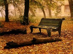 Park Bench Photo: This Photo was uploaded by surfsunskate. Find other Park Bench pictures and photos or upload your own with Photobucket free image and . Fall Desktop Backgrounds, Desktop Wallpapers, Windows Desktop, Natur Wallpaper, Old Benches, Park Benches, Garden Benches, Autumn Park, Autumn Scenery