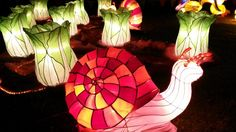 The Auckland Lantern Festival is celebrated on the first full moon ...