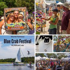 Photos from the #LRBlueCrab #Festival this weekend are up on Facebook /BlueCrabFestival. #LittleRiverSC North Myrtle Beach, Little River, World Famous, Event Calendar, Festivals, Facebook, Big, Instagram Posts, Photos