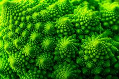 Another mathematically perfect plant (with fractals this one - romanescu brócoli/brécol here).