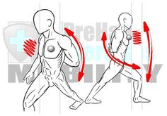 muscles and their motions List of movements of the human body  of muscles and because structures peculiar to the bodies of humans and other species block motions unsuited to their anatomies.