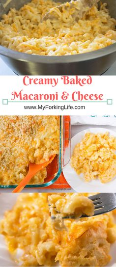 Look Over This Creamy baked macaroni and cheese, Perfect side dish for Thanksgiving or any family dinner. This is the best baked macaroni recipe you will ever try. The post Creamy Baked Macaroni and Cheese appeared first on Recipes . Baked Macaroni Recipe, Macaroni Recipes, Macaroni And Cheese, Pasta Recipes, Steak Recipes, Thanksgiving Dinner Recipes, Holiday Recipes, Thanksgiving Mac And Cheese, Easy Thanksgiving Sides