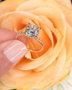 Wedding Rings Engagement Videos Simple 39 New Ideas Wedding Engagement, Wedding Bands, Wedding Ring, Solitaire Engagement, Gold Wedding, Princess Wedding, Bridal Rings, Wedding Venues, Round Cut Engagement Rings