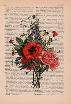 Red Poppy Flowers - Vintage Dictionary Print Vintage Book Print Page Art Upcycled Vintage Book Art Book Page Art, Book Pages, Book Art, Vintage Flowers, Vintage Floral, Mural Floral, Red Poppies, Poppy Flowers, Floral Bouquets