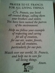 Little Prayer to St. Francis of Assisi....