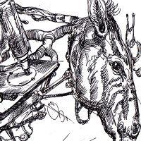 alexboya.com Moose Art, Cooking Recipes, Animals, Food Recipes, Animaux, Animal, Animales, Recipes, Animais