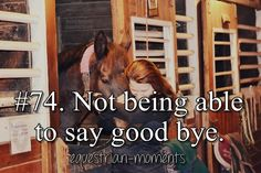 Not being able to say good bye. #horse #equestrian