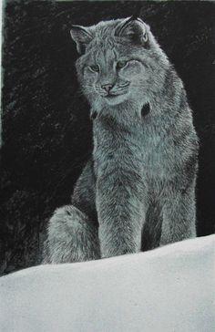 Robert Bateman Original Lithograph Snowy Range Lynx