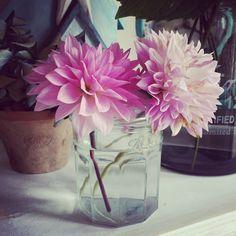 #dahlias #garden #nature #flowers