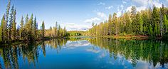 Aspen Mirror Lake, Duck Creek, Utah Great Places, Places Ive Been, Beautiful Places, Brian Head, Mirror Lake, Picts, Heaven On Earth, Aspen, Lakes