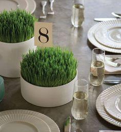 Seattle Going Green: Using Wheatgrass as Wedding Reception Centerpieces
