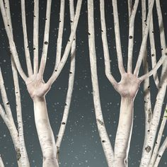 GEA / Mariola Fuentes / Detalle Tamaño: 96 x 200 cms Autor: Angel Pantoja Moose Art, Animals, Fonts, Author, Animales, Animaux, Animal, Animais