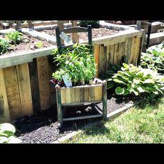 chair planter, instant herb garden