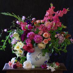 A Renoir Inspiration - Tulipina