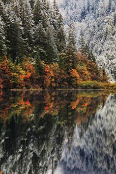 Mirror Lake | Jacky CW