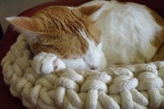 Regular Cuna Crocheted Cotton Cat Bed Regular Size by hauspanther