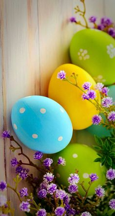 Whether you're after Easter wallpapers with cute bunnies, carrots or multi-colored pastel eggs. there are Easter wallpapers for everyone. Happy Easter Wallpaper, Spring Wallpaper, Holiday Wallpaper, Easter Backgrounds, Wallpaper Backgrounds, Wallpaper Ideas, Iphone Wallpapers, Wallpaper Quotes, Wallpper Iphone