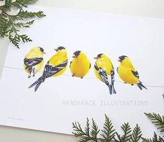 Colored Pencil Art Print by Headspace Illustrations, Finches on a handpainted gold line  https://www.etsy.com/ca/listing/581353768/finches-golden-american-goldfinch-on