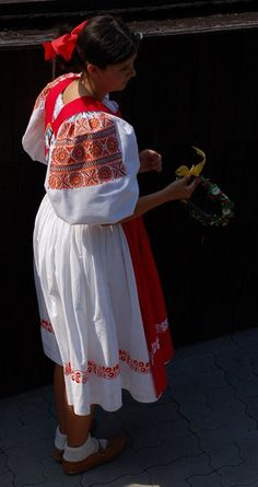 Folk Clothing, Heart Of Europe, Anton, Lace Skirt, Costumes, Clothes, Beautiful, Collection, Travelling