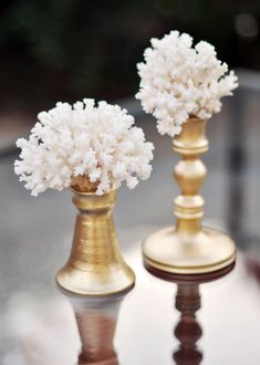 I love the look of coral...wonder if it would work to paint the coral gold and make the candlesticks white?