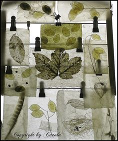 Clarified beeswax nature collage by Boxwoodcottage, via Flickr