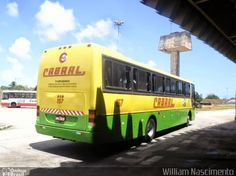 DESENHOS ONIBUSALAGOAS: CABRAL 157