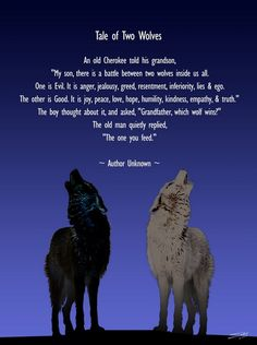 "Two wolves prompt -Fear or Love Who are you feeding? What does the Good wolf need to thrive? How can you ""starve"" the fear wolf?"
