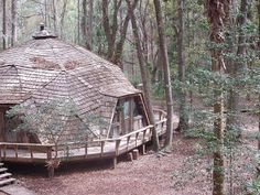 Let's Stay Here: Tree Houses