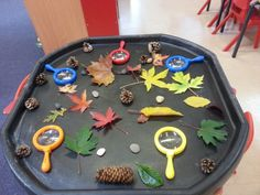 Autumn leaves and natural materials sensory tuff tray, with magnifying glasses
