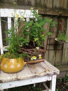 Summer gardening | Stoned Gypsy