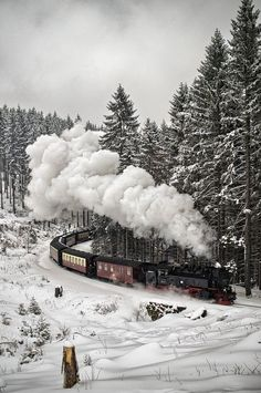 "expression-venusia: "" Snow Train, The Blac Expression Photography """
