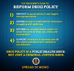 """White House 2013 National Drug Control Strategy Released 